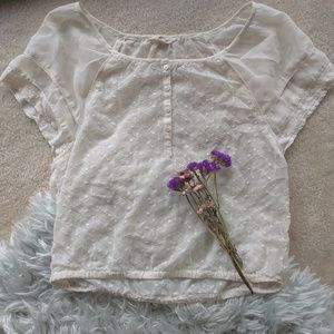 Lace Sheer Top with Butterfly Sleeves from AE